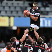 Absa Currie Cup: The Sharks v Toyota Free State Cheetahs